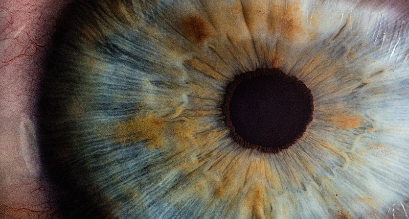 7 Serious Health Issues An Eye Exam Can Detect